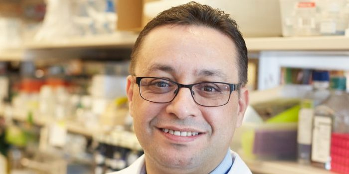 Recent pulications of Taha Merghoub, PhD, AASA President